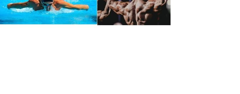 sport-e-body