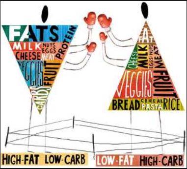 high fat
