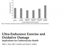 Marco Perugini | Wellness Coach & fitness trainer