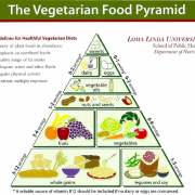 the vegetarian food pyramid